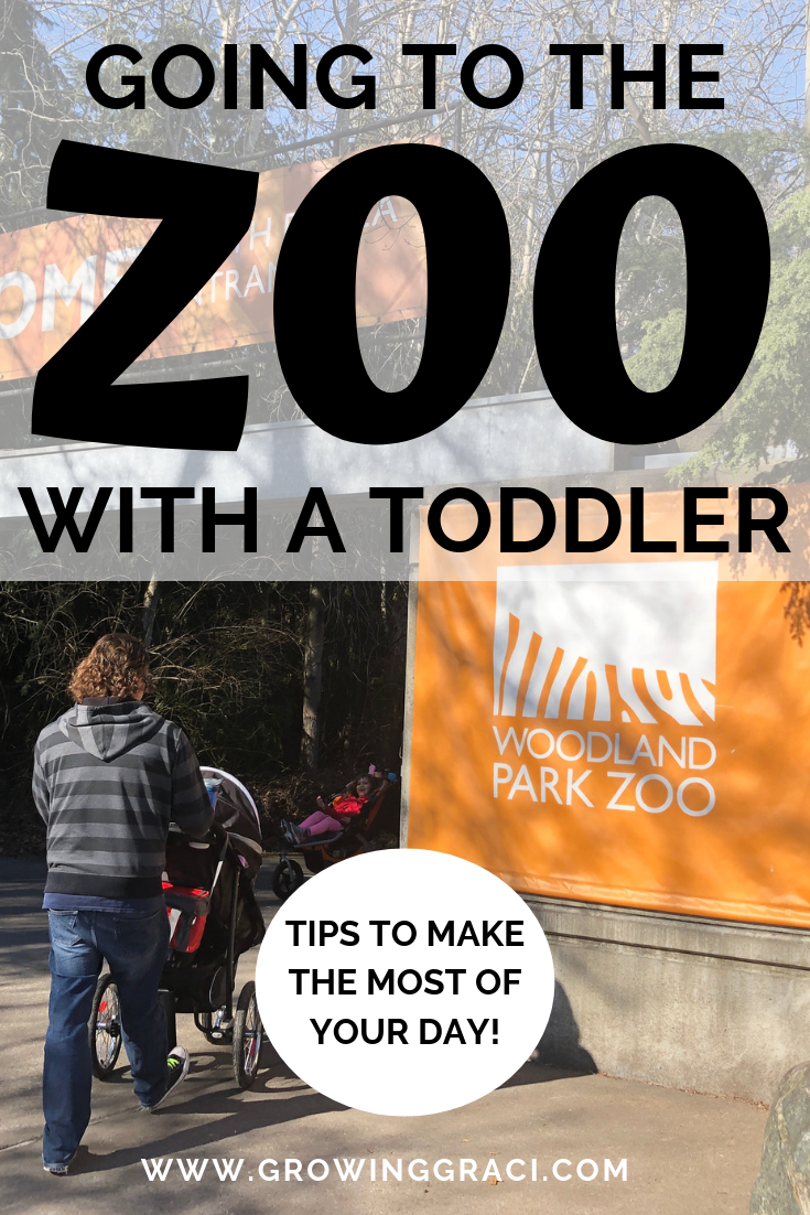 Zoo Trips With Toddlers: Tips To Have The Best Time
